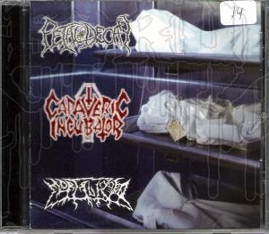 CADAVERIC INCUBATOR / FETAL DECAY / MORTALIZED - Split