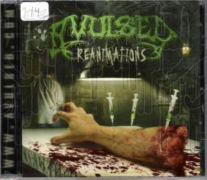 AVULSED - Reanimations