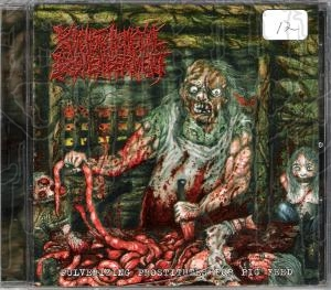 PSYCHOTIC HOMOCIDAL DISMEMBERMENT - Pulverizing...