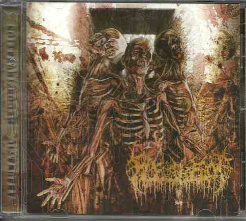 FLESHROT - Traumatic Reconfiguration