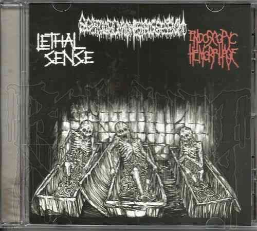 SCATOLOGIC MADNESS POSSESSION / ENDOSCPTYC HEMPRRHAGE / LETHAL SENSE - 3 Way Split C.D.