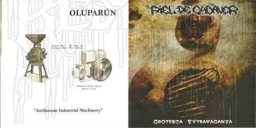 OLUPARÚN / PIEL DE CADAVER - Split C.D.